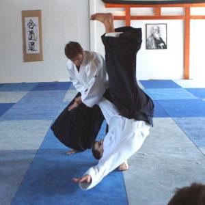 Aikido Dojo Berlin – Guillemin 14