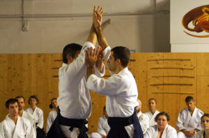 Aikido Dojo Südstern 30 (33)