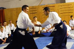 Aikido Dojo Südstern 30 (34)