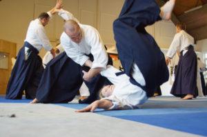 Aikido Dojo Südstern 30 (80)