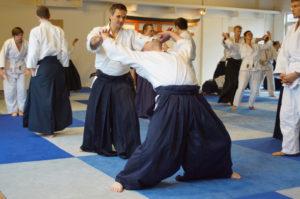 Aikido Dojo Südstern 30 (81)