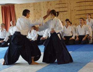 Aikido Dojo Südstern 30 (88)