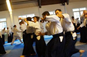 Aikido Dojo Südstern 30 (9)